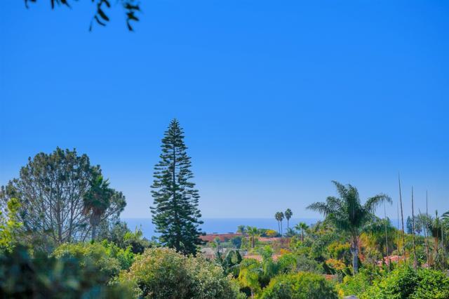 1609 Caminito Asterisco, La Jolla, CA 92037 (#180062882) :: Keller Williams - Triolo Realty Group