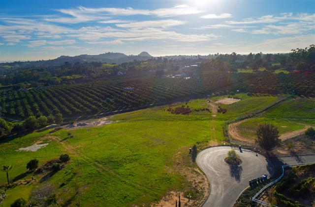 0 Lake Ridge Road #27, Fallbrook, CA 92028 (#180068307) :: Keller Williams - Triolo Realty Group