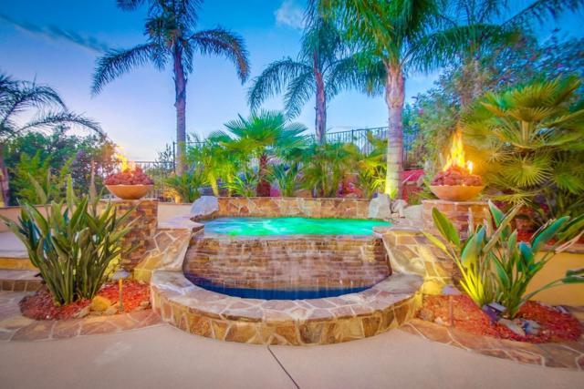 29444 Welk Highland Drive, Escondido, CA 92026 (#190001785) :: Coldwell Banker Residential Brokerage