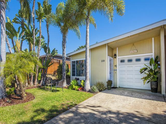 239 Gloxina St, Encinitas, CA 92024 (#190006293) :: Neuman & Neuman Real Estate Inc.