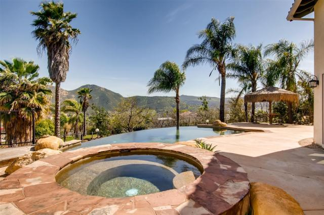 14651 Ranch Trail, El Cajon, CA 92021 (#190016733) :: Whissel Realty