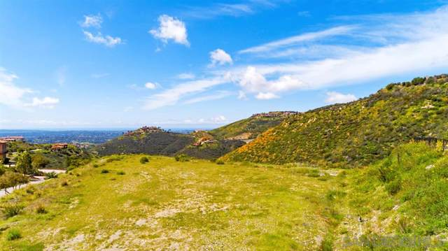 Lot 74 El Brazo #74, Rancho Santa Fe, CA 92067 (#190017560) :: Wannebo Real Estate Group