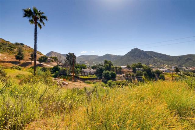 917 Kelly Dr 5&6, El Cajon, CA 92019 (#190020936) :: Farland Realty