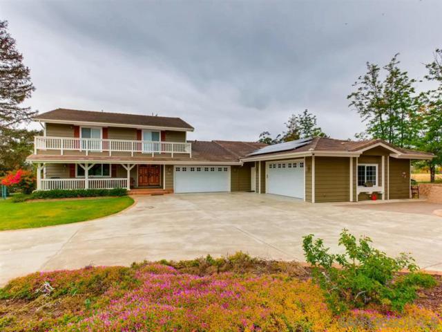 1184 Capra Way, Fallbrook, CA 92028 (#190021553) :: Kim Meeker Realty Group