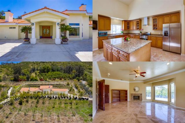525 Stewart Canyon Rd, Fallbrook, CA 92028 (#190029548) :: Neuman & Neuman Real Estate Inc.