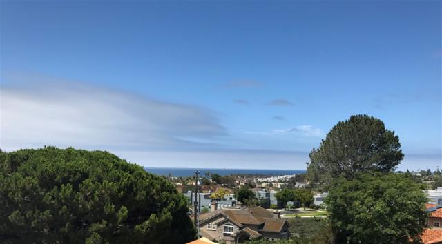850 Avocado Place, Del Mar, CA 92014 (#190037119) :: Coldwell Banker Residential Brokerage