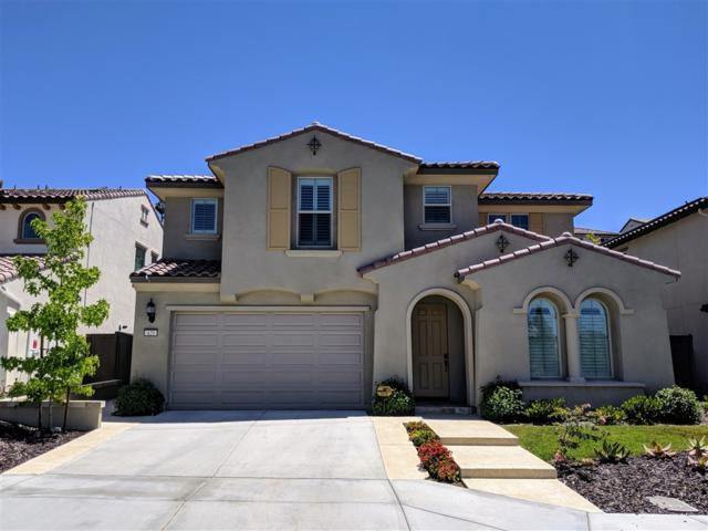 429 Adobe Estates, Vista, CA 92083 (#190038321) :: Neuman & Neuman Real Estate Inc.