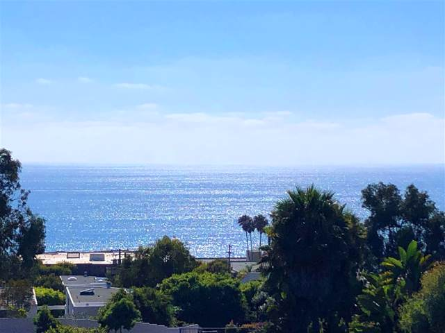 320 Del Mar Heights Rd, Del Mar, CA 92014 (#190044154) :: Neuman & Neuman Real Estate Inc.