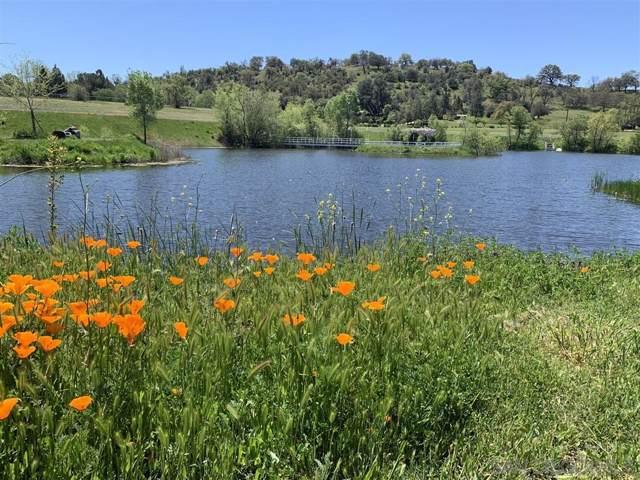 3515 Highway 78, Julian, CA 92036 (#190057387) :: Neuman & Neuman Real Estate Inc.