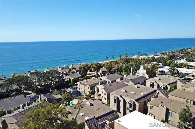 279 Sea Forest Court, Del Mar, CA 92014 (#190058988) :: SunLux Real Estate