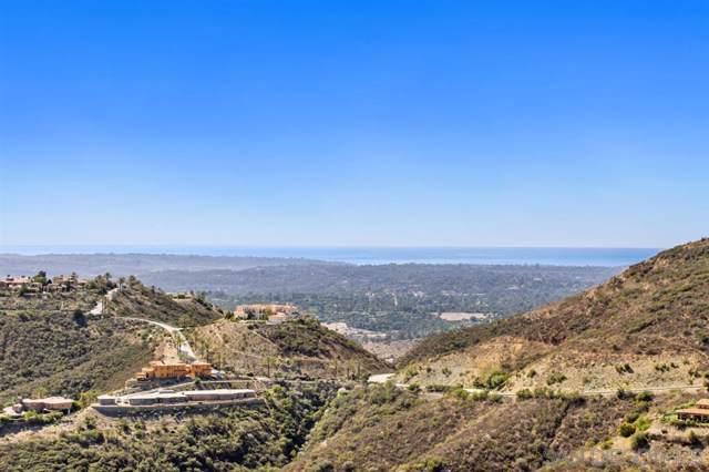 18287 Via Ambiente, Rancho Santa Fe, CA 92067 (#190060071) :: Allison James Estates and Homes