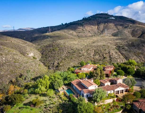 18668 Via Catania, Rancho Santa Fe, CA 92091 (#190065023) :: Neuman & Neuman Real Estate Inc.