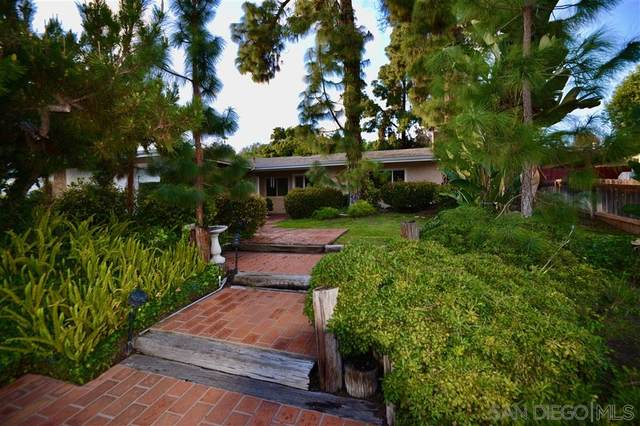 10742 Flambeau Place, La Mesa, CA 91941 (#200013901) :: Neuman & Neuman Real Estate Inc.