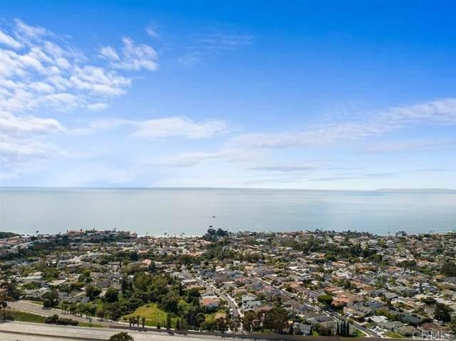 103 E Avenida San Gabriel, San Clemente, CA 92672 (#200014293) :: COMPASS