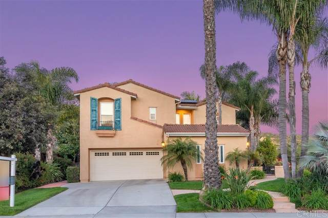 3710 Saddle Dr, Carlsbad, CA 92010 (#200014604) :: The Stein Group