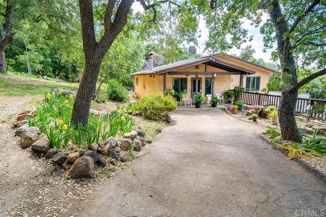 25235 Mesa Grande Road, Santa Ysabel, CA 92070 (#200022570) :: Neuman & Neuman Real Estate Inc.