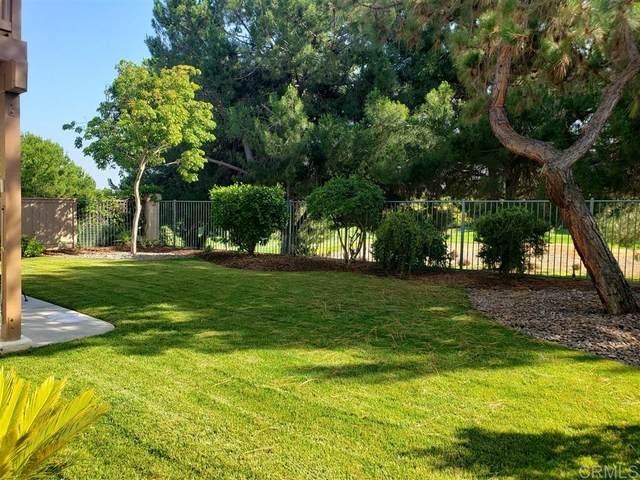 1308 Indian Creek Pl, Chula Vista, CA 91915 (#200030160) :: Neuman & Neuman Real Estate Inc.