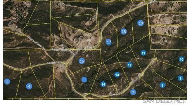 0000 Montiel Truck Trl #18, Jamul, CA 91935 (#200035090) :: Neuman & Neuman Real Estate Inc.