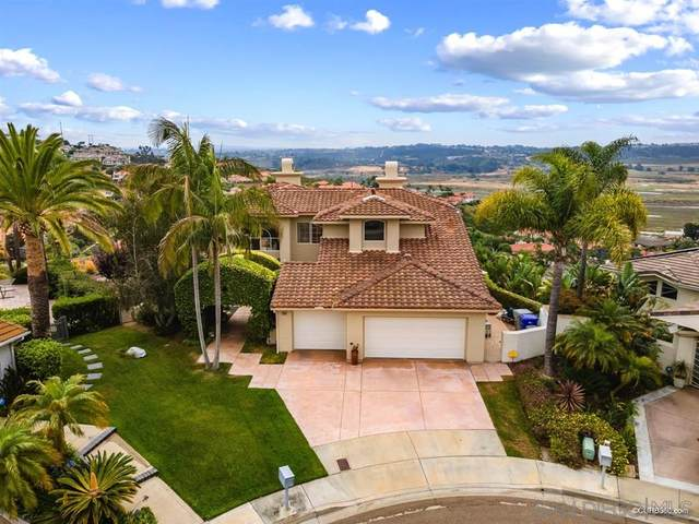 2945 Avocado Point, Del Mar, CA 92014 (#200043269) :: Neuman & Neuman Real Estate Inc.