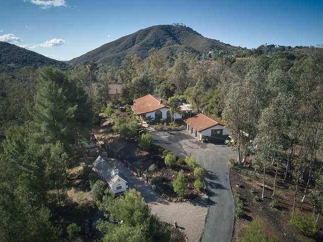 7980 Harmony Grove Rd, Escondido, CA 92029 (#200054836) :: Dannecker & Associates