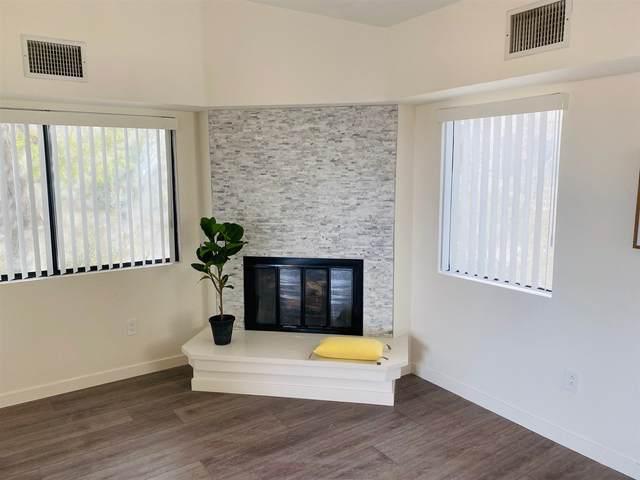 1666 Las Casitas Dr, Borrego Springs, CA 92004 (#210000093) :: Neuman & Neuman Real Estate Inc.