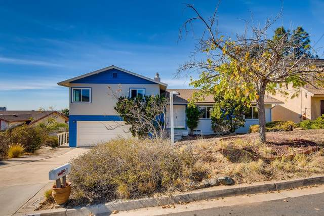 1626 La Mesa Avenue, Spring Valley, CA 91977 (#210001256) :: PURE Real Estate Group