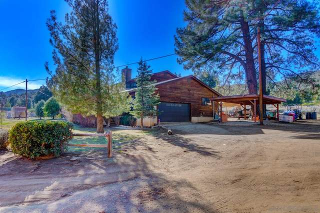 8644 Pine Creek Rd., Pine Valley, CA 91962 (#210003541) :: Neuman & Neuman Real Estate Inc.
