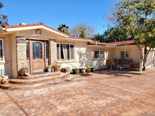 4032 Rogers Rd, Spring Valley, CA 91977 (#210004324) :: Neuman & Neuman Real Estate Inc.