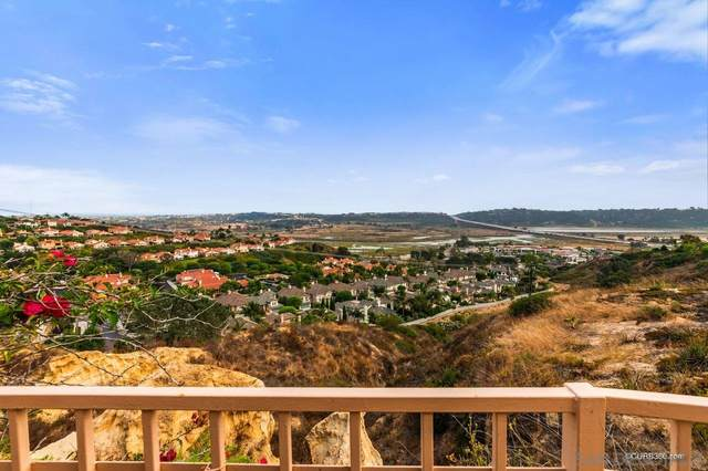 2945 Avocado Point, Del Mar, CA 92014 (#210004877) :: Neuman & Neuman Real Estate Inc.