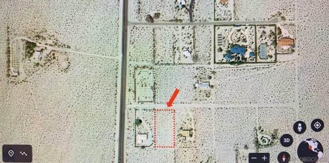 Indigo Lane #23, Borrego Springs, CA 92004 (#210006693) :: Zember Realty Group