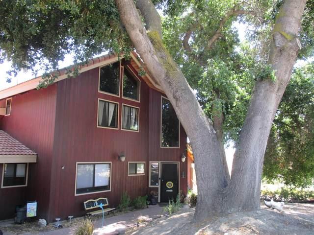 24433 Del Amo Rd., Ramona, CA 92065 (#210012035) :: Wannebo Real Estate Group