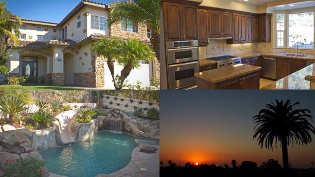 1165 Chestnut Avenue, Carlsbad, CA 92008 (#180000229) :: The Houston Team | Coastal Premier Properties
