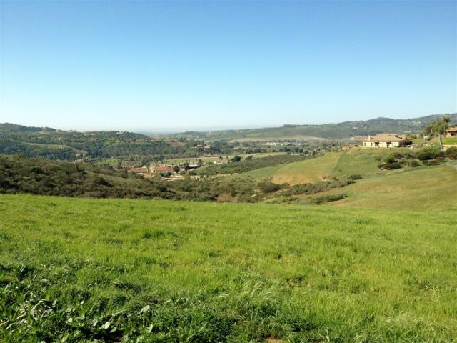 0 Lilac Road W. #0, Bonsall, CA 92003 (#180001933) :: The Yarbrough Group
