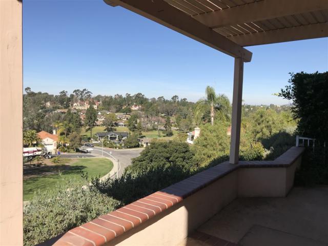 1351 Via Firenze, San Marcos, CA 92078 (#180010465) :: Beachside Realty