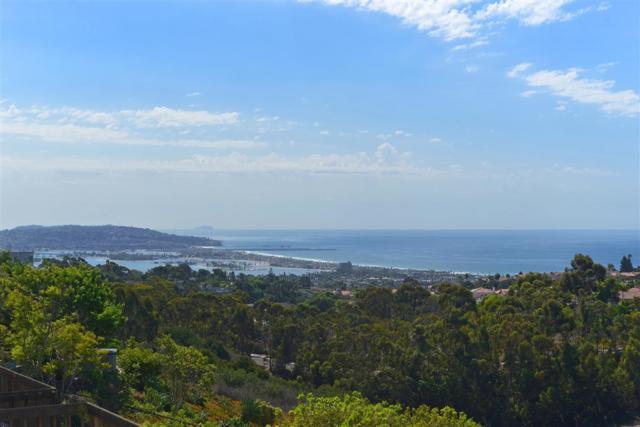 5842 Sagebrush Rd, La Jolla, CA 92037 (#180060383) :: Farland Realty