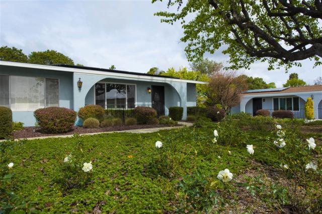 3589 Pear Blossom Ave, Oceanside, CA 92057 (#190011936) :: Pugh | Tomasi & Associates