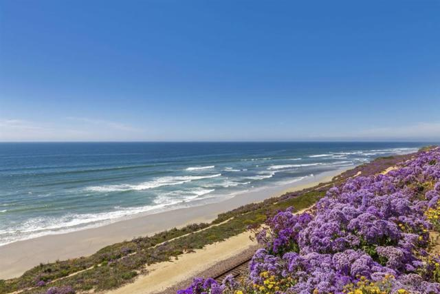 133 Spinnaker Court, Del Mar, CA 92014 (#190021198) :: Coldwell Banker Residential Brokerage