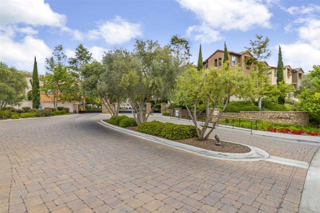 1563 Chert, San Marcos, CA 92078 (#190030738) :: Coldwell Banker Residential Brokerage