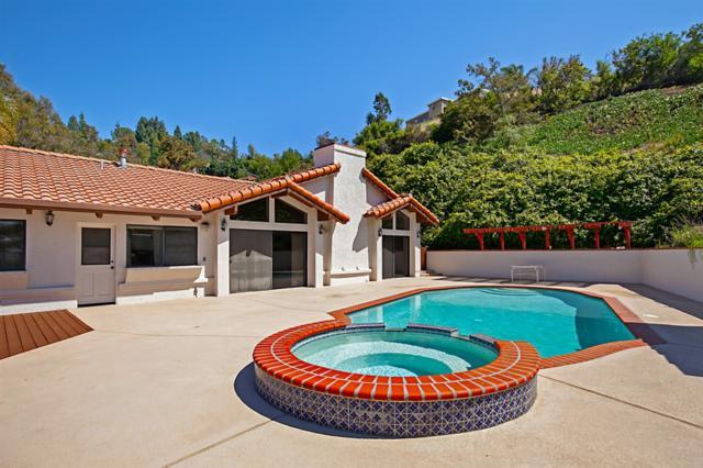 4910 Helix Hills Ter, La Mesa, CA 91941 (#190031406) :: Neuman & Neuman Real Estate Inc.