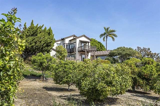 16636 Los Morros, Rancho Santa Fe, CA 92067 (#200010490) :: Keller Williams - Triolo Realty Group