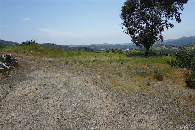 2251 Glenn Rd #08, Fallbrook, CA 92028 (#200020791) :: Neuman & Neuman Real Estate Inc.