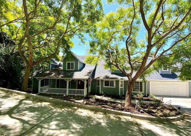 869 Avocado Place, Del Mar, CA 92014 (#200031042) :: The Stein Group
