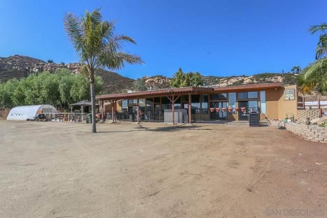 15397 Isla Vista Rd, Jamul, CA 91935 (#200048016) :: Cay, Carly & Patrick | Keller Williams