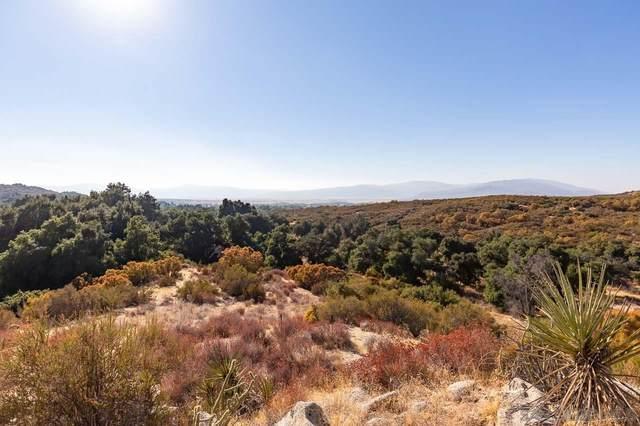 0 Camino Moro Lot F, Parcel 3, Warner Springs, CA 92086 (#200049581) :: Team Forss Realty Group