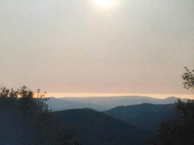 34 Acres Panorama Trail 2A, Santa Ysabel, CA 92070 (#170056948) :: Neuman & Neuman Real Estate Inc.