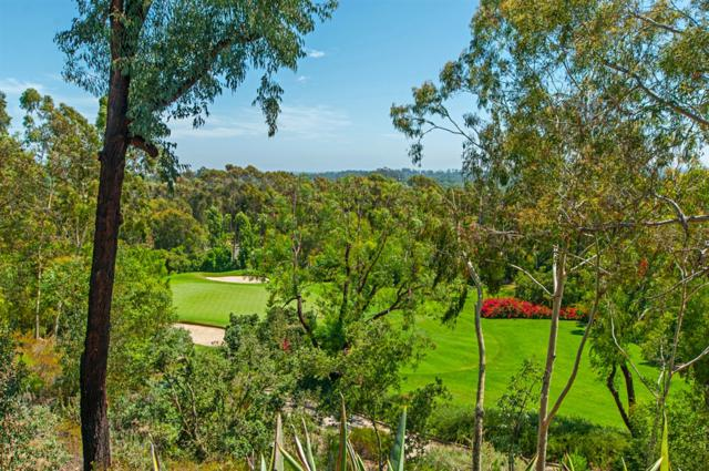 18380 Calle La Serra, Rancho Santa Fe, CA 92091 (#180065154) :: Neuman & Neuman Real Estate Inc.