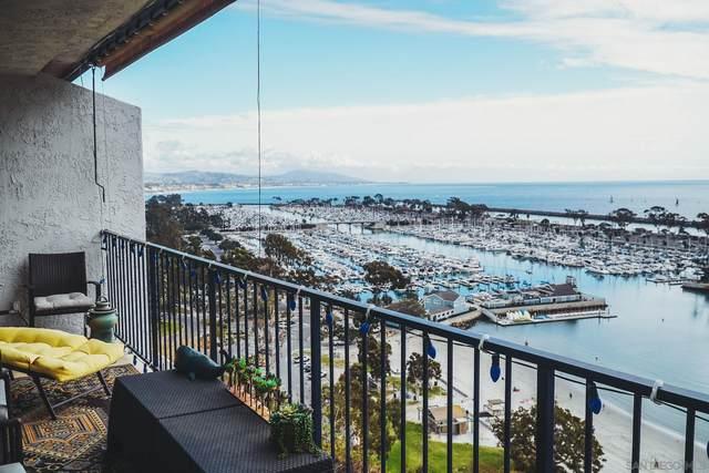 24242 Santa Clara #24, Dana Point, CA 92629 (#200053481) :: Dannecker & Associates