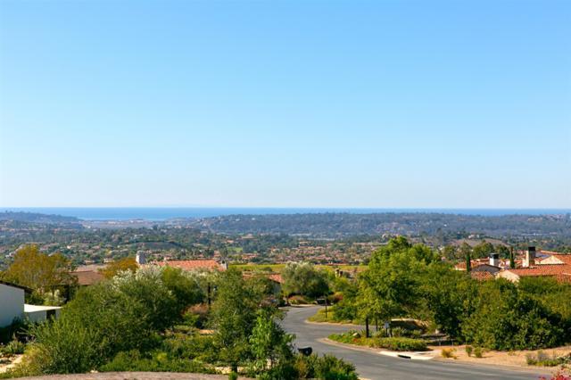 8069 Entrada De Luz E, San Diego, CA 92127 (#180062988) :: Beachside Realty