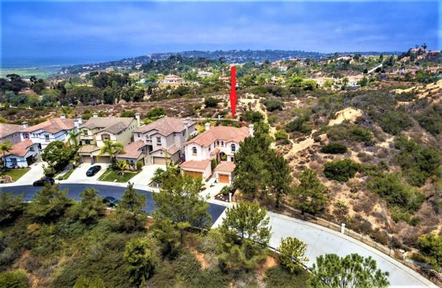 4070 Lago Di Grata Cir, San Diego, CA 92130 (#180038092) :: Keller Williams - Triolo Realty Group