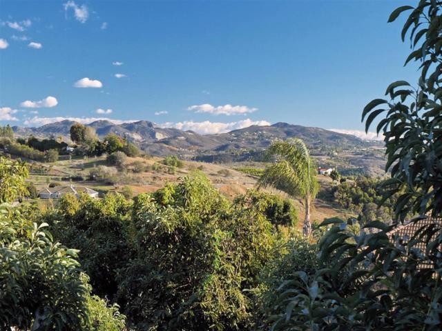 0 Via Monte Alegre #0, Bonsall, CA 92003 (#180068051) :: Farland Realty